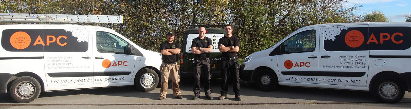Pest control in Worksop - a photo of the Anston Pest Control team with the vans